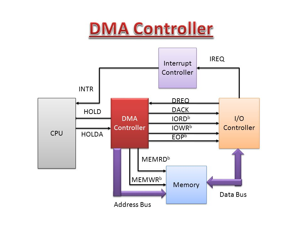 DMA Controller Interrupt Controller IREQ INTR DREQ DACK IORDb IOWRb