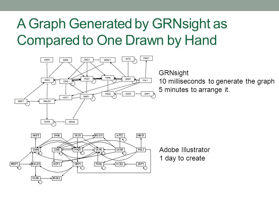 A Graph Generated by GRNsight as Compared to One Drawn by Hand