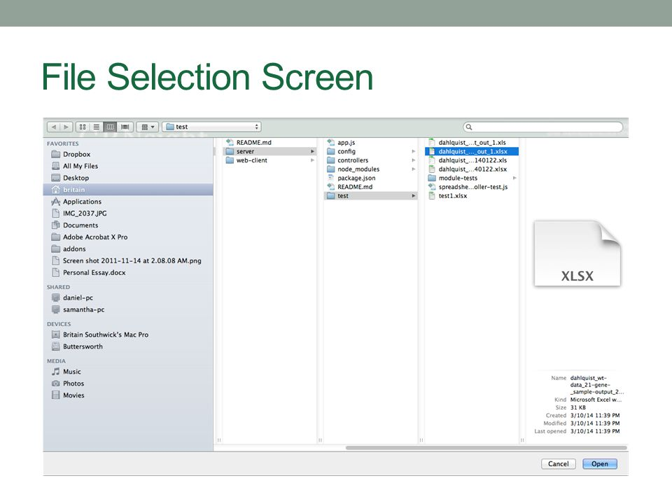 File Selection Screen