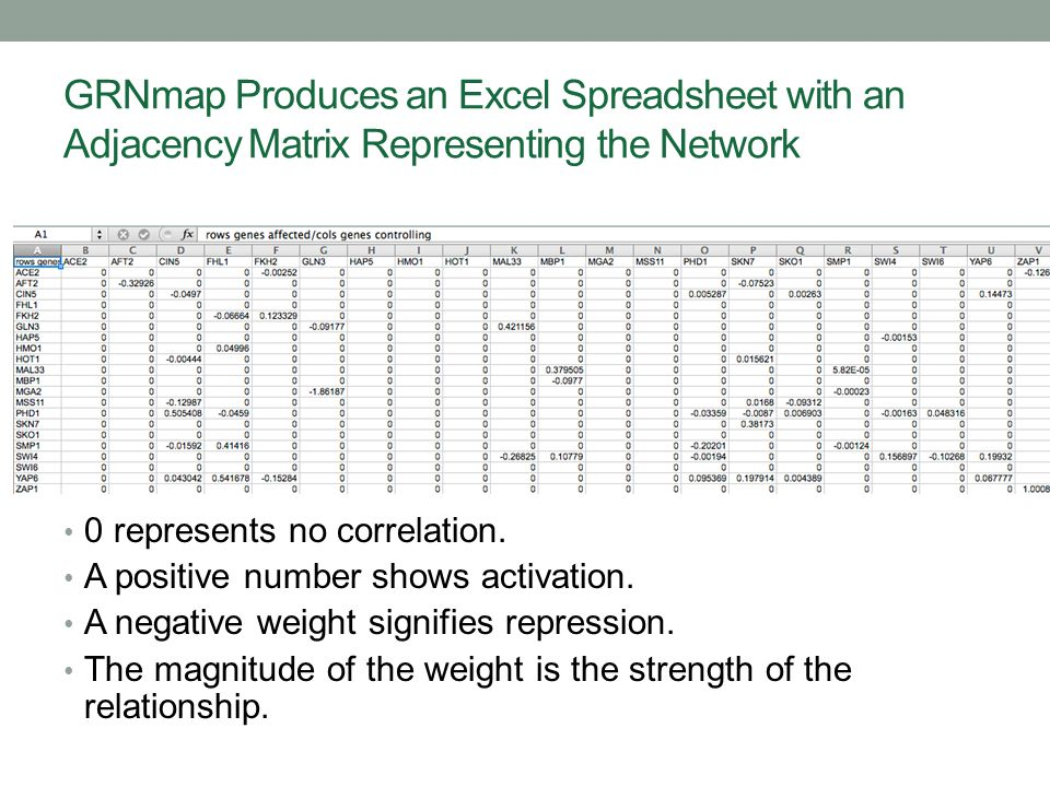 GRNmap Produces an Excel Spreadsheet with an Adjacency Matrix Representing the Network