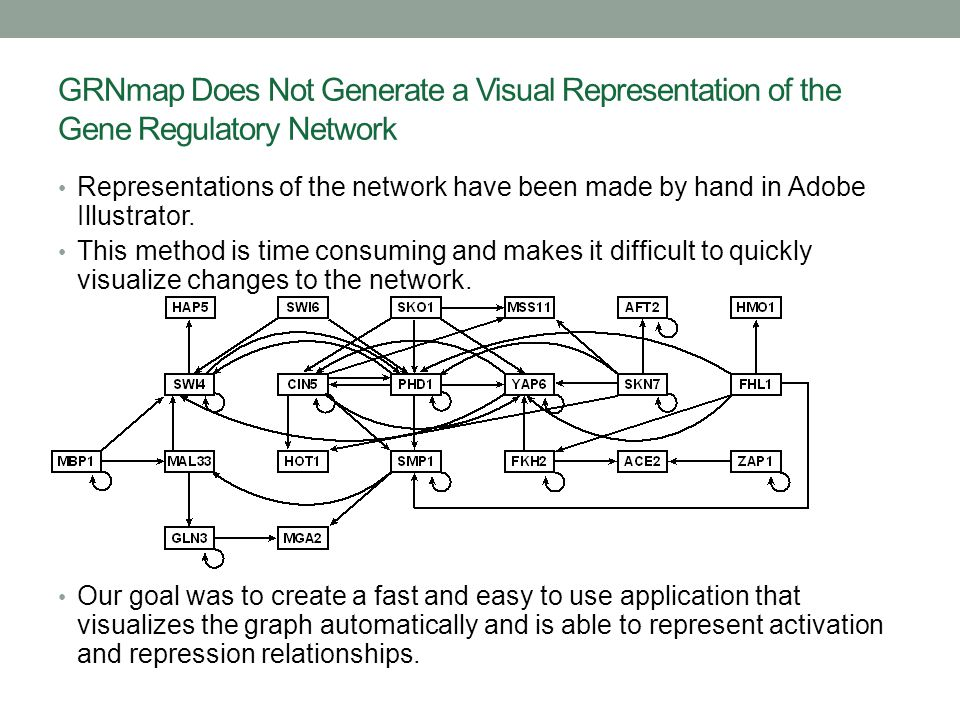 GRNmap Does Not Generate a Visual Representation of the Gene Regulatory Network