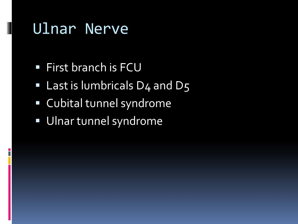 Ulnar Nerve First branch is FCU Last is lumbricals D4 and D5