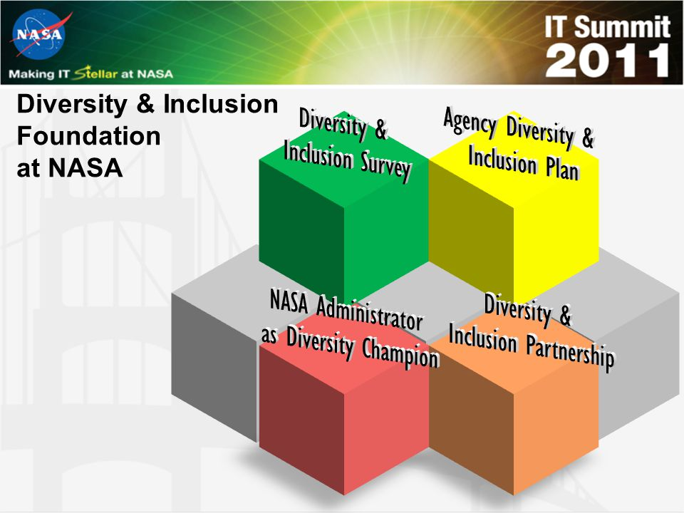 Diversity & Inclusion Foundation at NASA