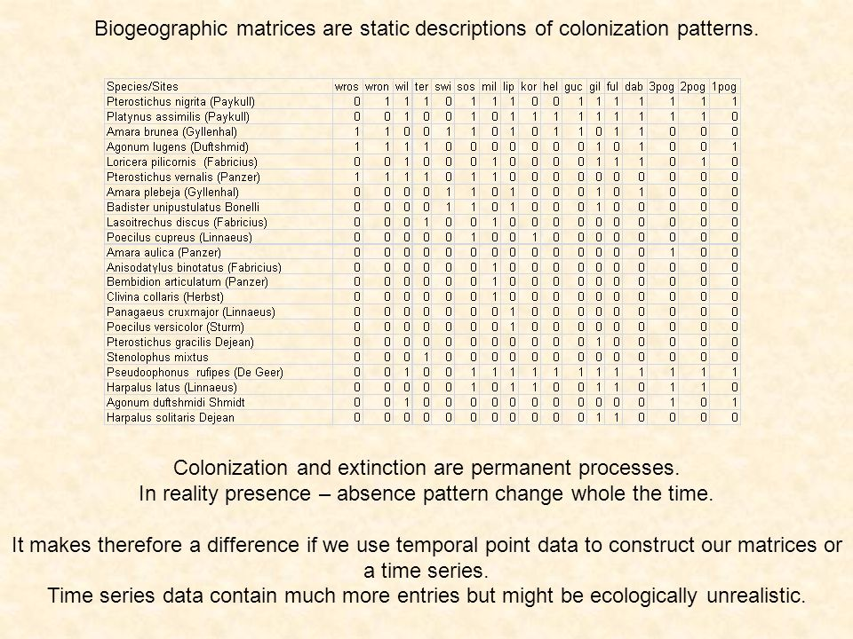 Biogeographic matrices are static descriptions of colonization patterns.