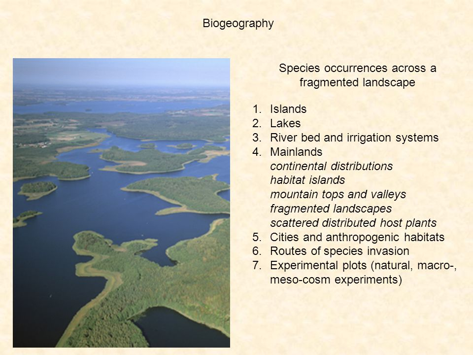 Species occurrences across a fragmented landscape