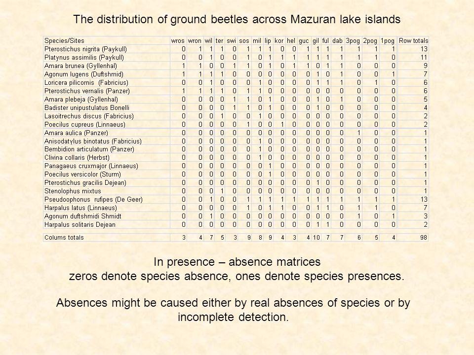 The distribution of ground beetles across Mazuran lake islands