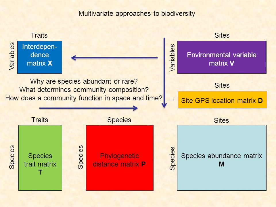 Multivariate approaches to biodiversity