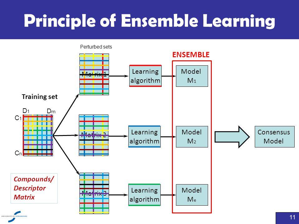 Principle of Ensemble Learning