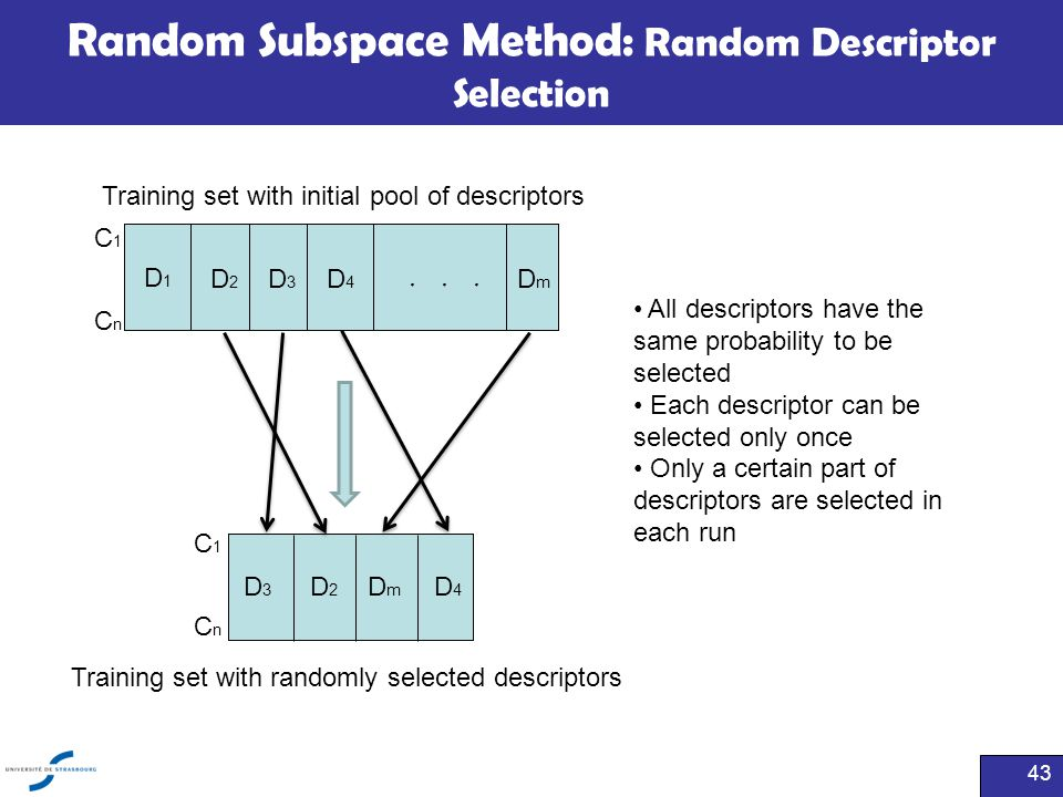 Random Subspace Method: Random Descriptor Selection