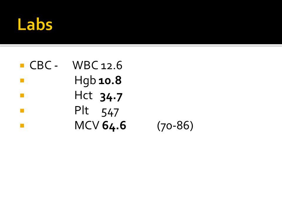 Labs CBC - WBC 12.6 Hgb 10.8 Hct 34.7 Plt 547 MCV 64.6 (70-86)