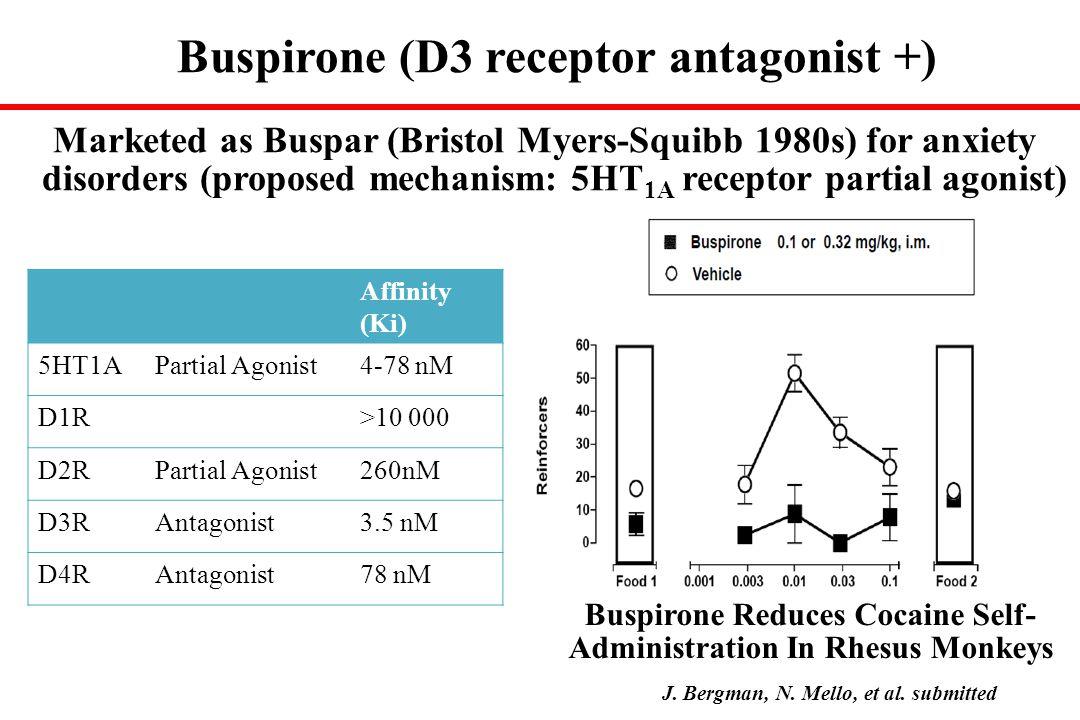 Buspirone (D3 receptor antagonist +)