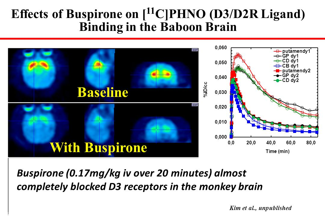 Baseline With Buspirone