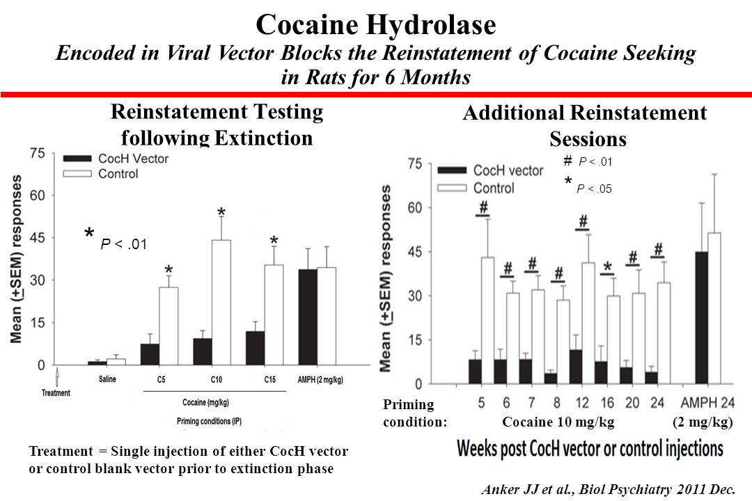 Cocaine Hydrolase * P < .01
