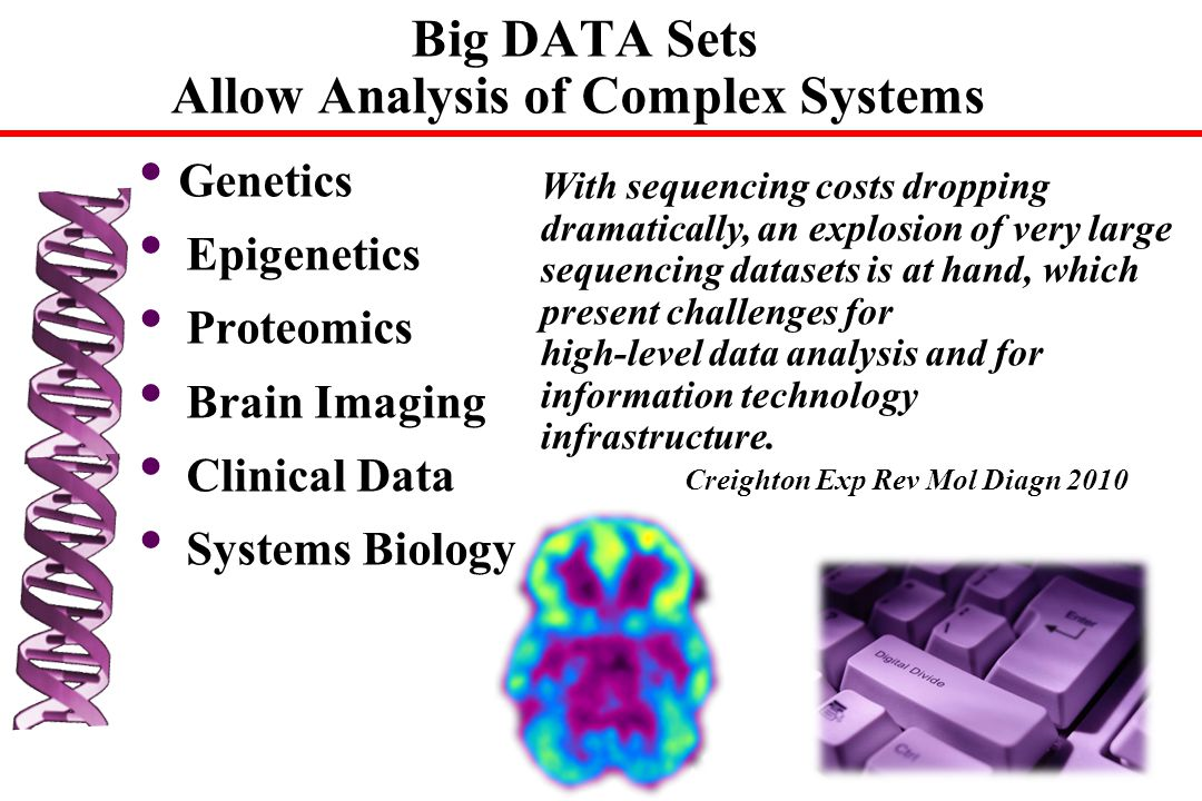 Big DATA Sets Allow Analysis of Complex Systems