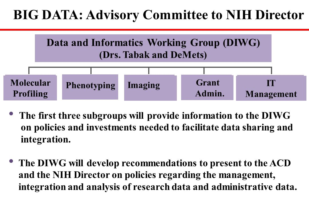 Data and Informatics Working Group (DIWG)