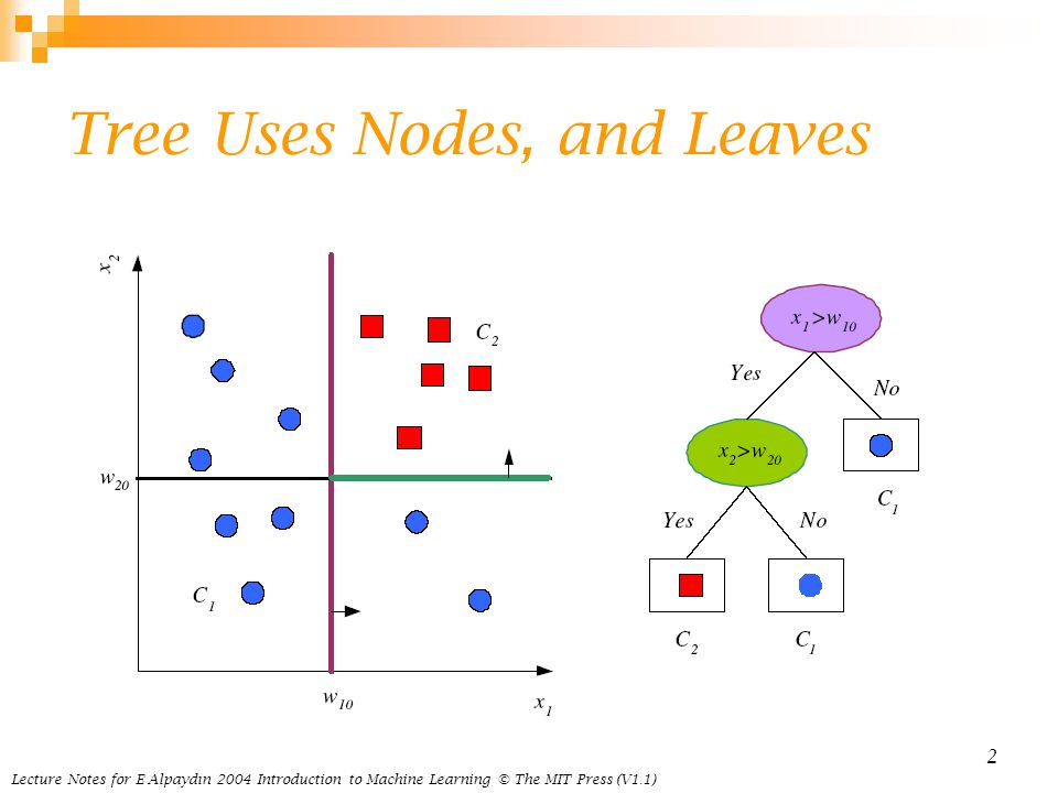 Tree Uses Nodes, and Leaves