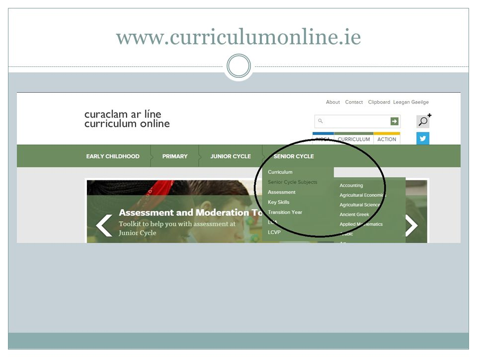 www.curriculumonline.ie