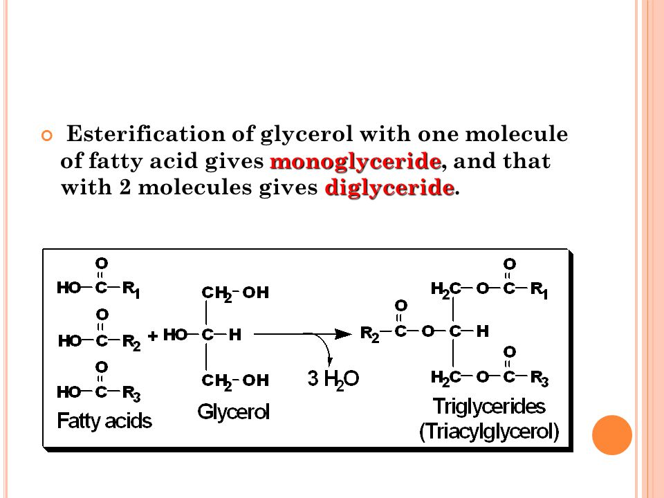 Esterification of glycerol with one molecule of fatty acid gives monoglyceride, and that with 2 molecules gives diglyceride.