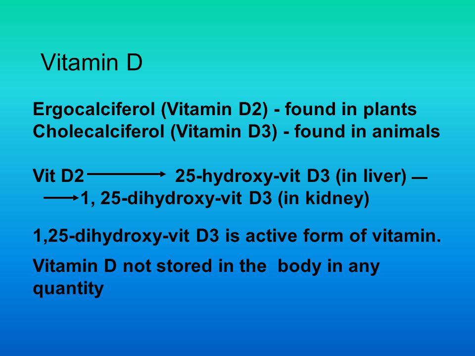 Vitamin D Ergocalciferol (Vitamin D2) - found in plants