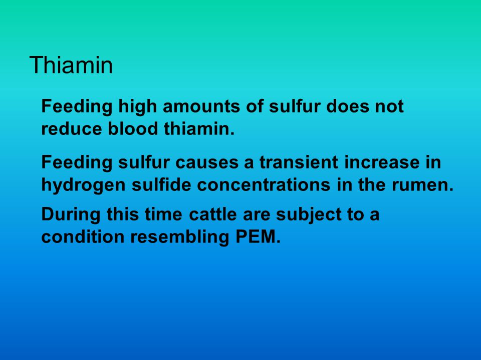 Thiamin Feeding high amounts of sulfur does not reduce blood thiamin.