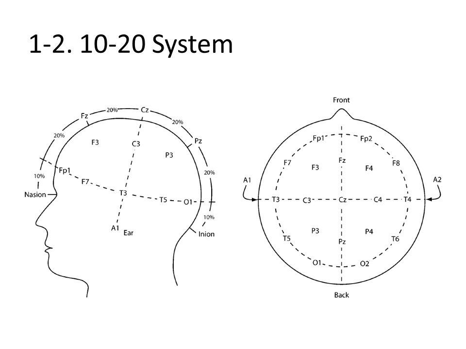 1-2. 10-20 System