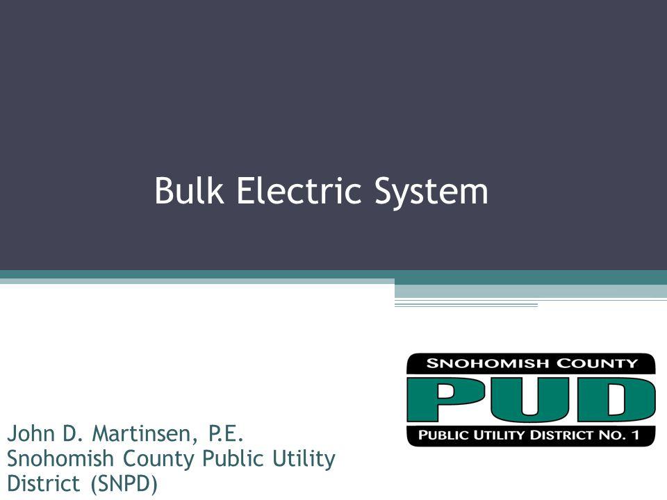 Bulk Electric System John D. Martinsen, P.E.