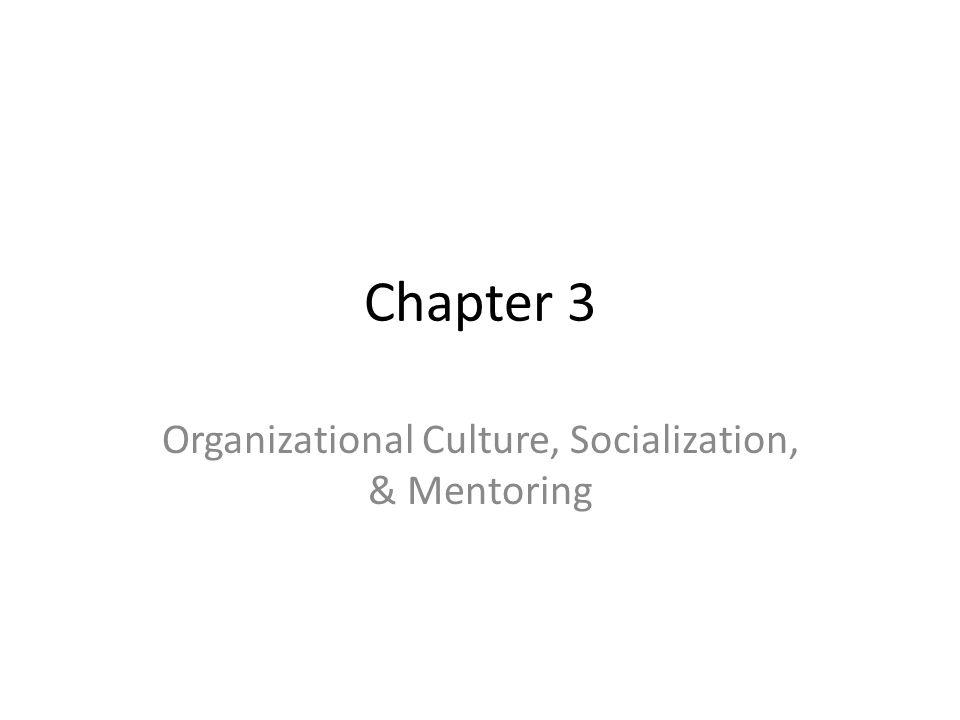 Organizational Culture, Socialization, & Mentoring