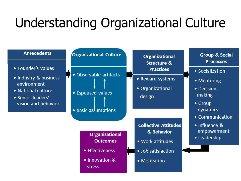 Power Structure of an Organization