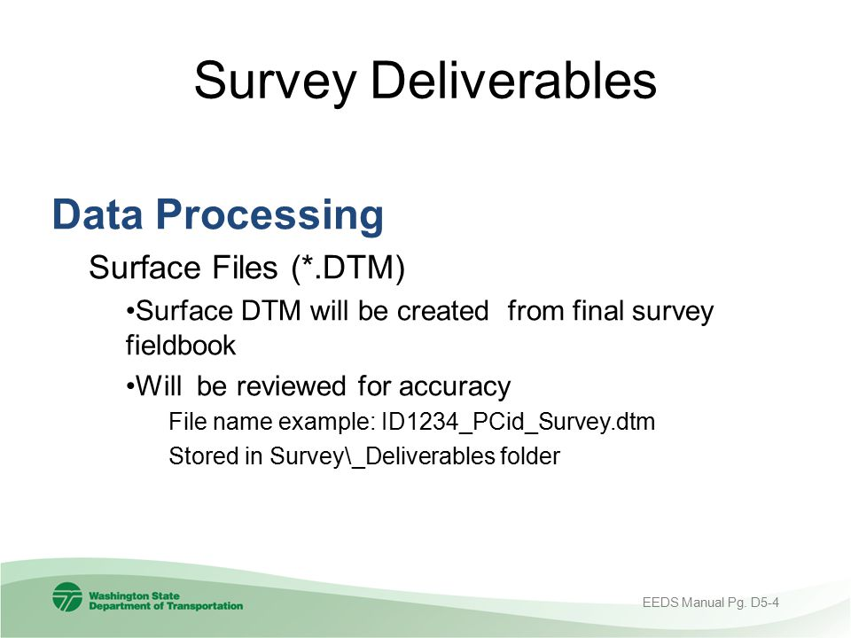 Survey Deliverables Data Processing Surface Files (*.DTM)