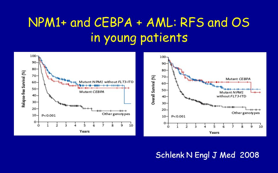 NPM1+ and CEBPA + AML: RFS and OS in young patients