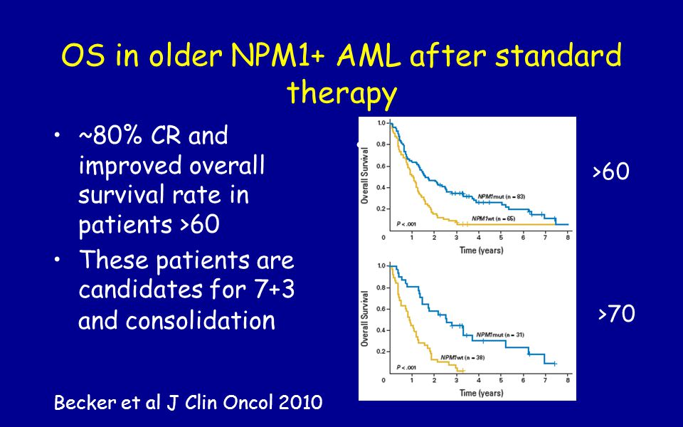 OS in older NPM1+ AML after standard therapy