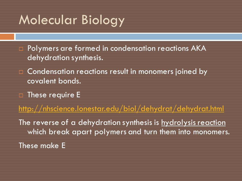 Molecular Biology Polymers are formed in condensation reactions AKA dehydration synthesis.