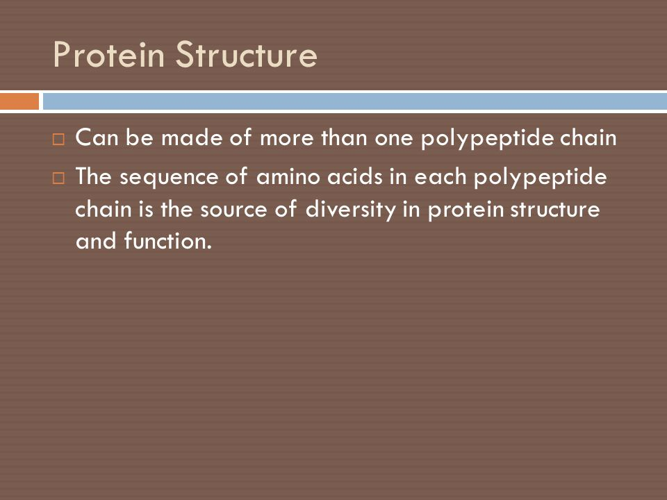 Protein Structure Can be made of more than one polypeptide chain