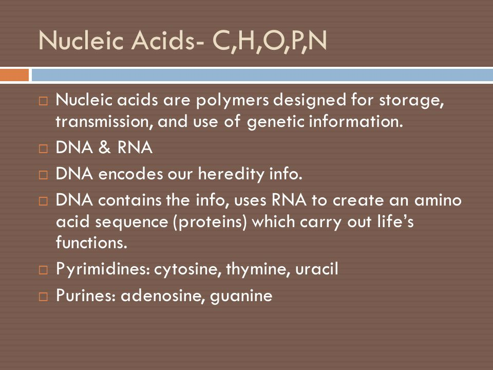 Nucleic Acids- C,H,O,P,N Nucleic acids are polymers designed for storage, transmission, and use of genetic information.