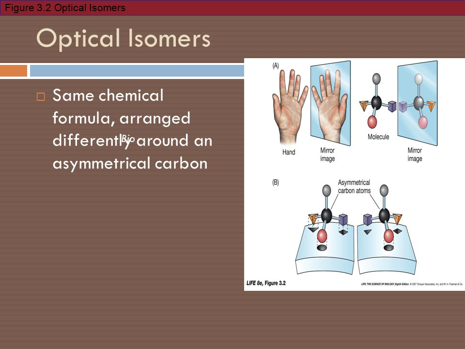 Figure 3.2 Optical Isomers