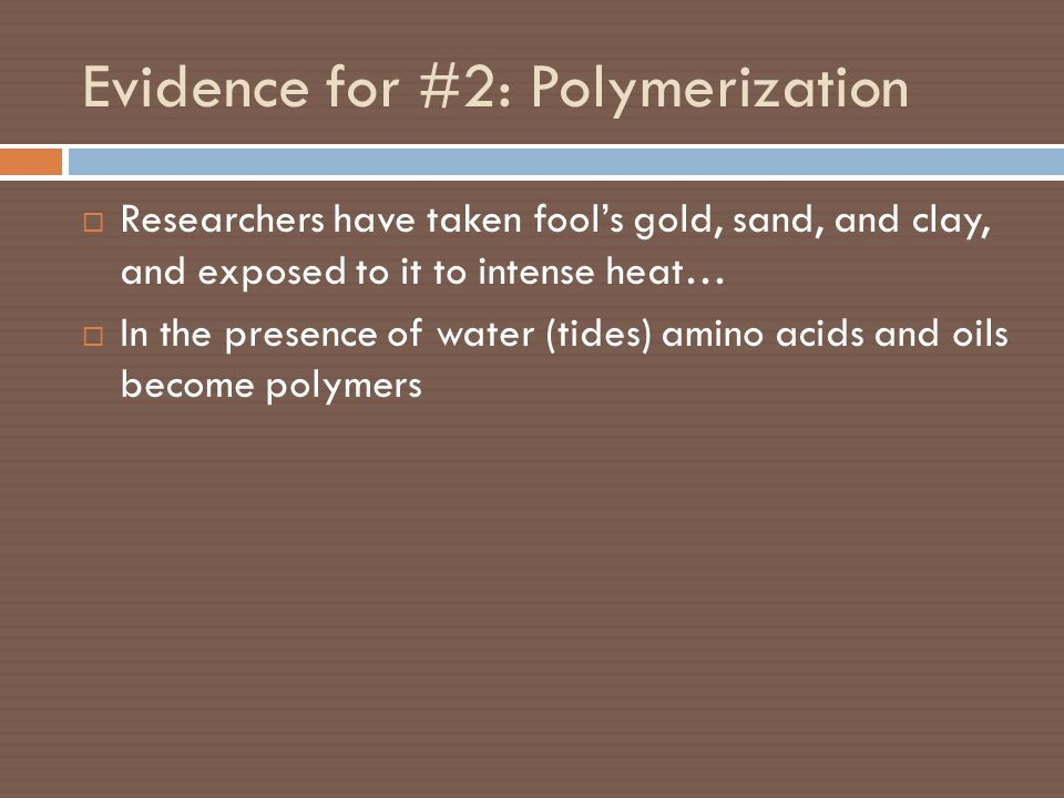 Evidence for #2: Polymerization