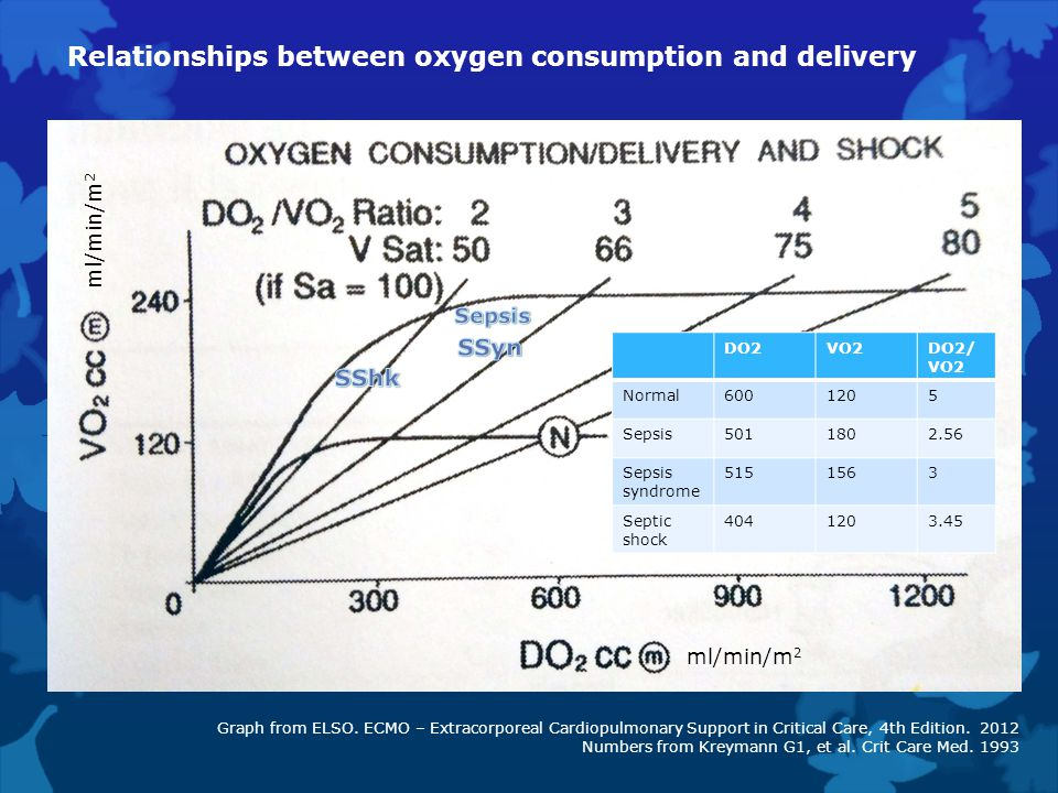 Relationships between oxygen consumption and delivery