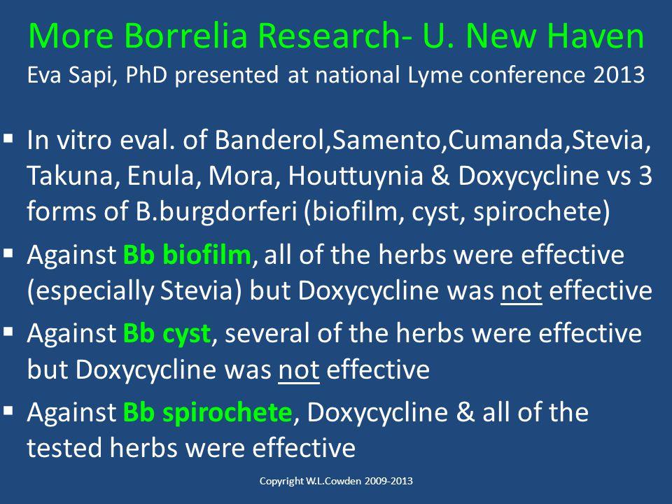 More Borrelia Research- U
