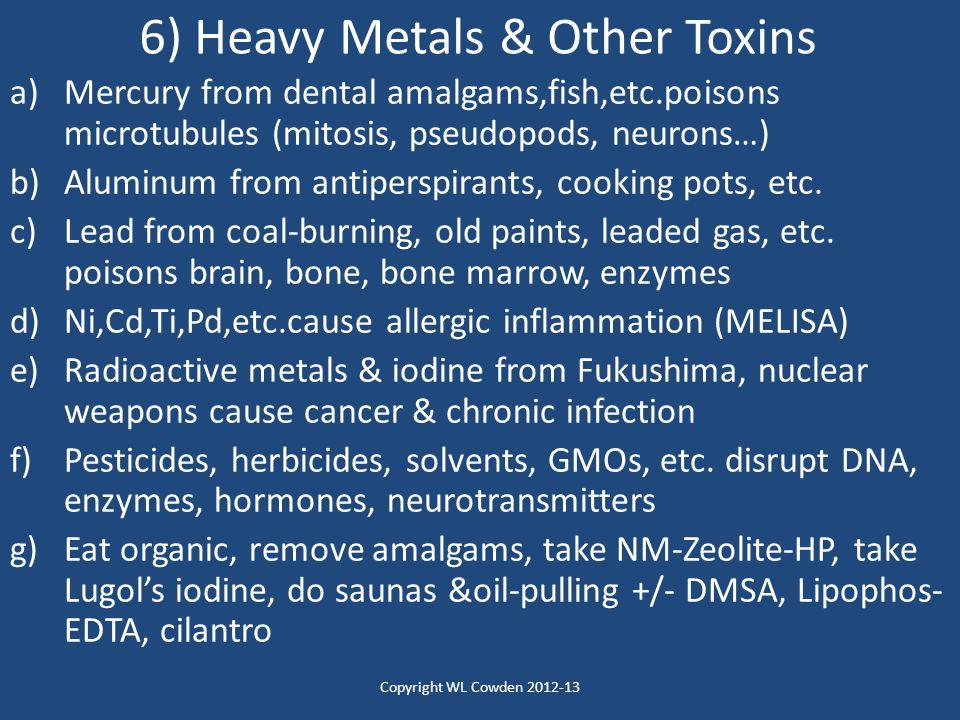 6) Heavy Metals & Other Toxins