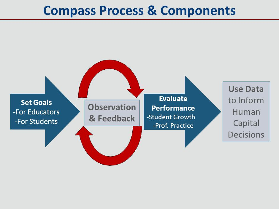 Compass Process & Components Observation & Feedback