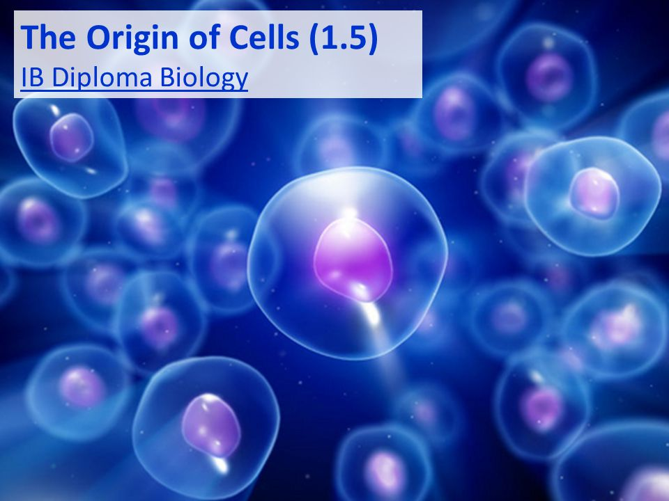 The Origin of Cells (1.5) IB Diploma Biology