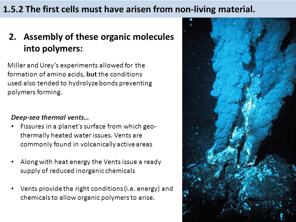 1.5.2 The first cells must have arisen from non-living material.