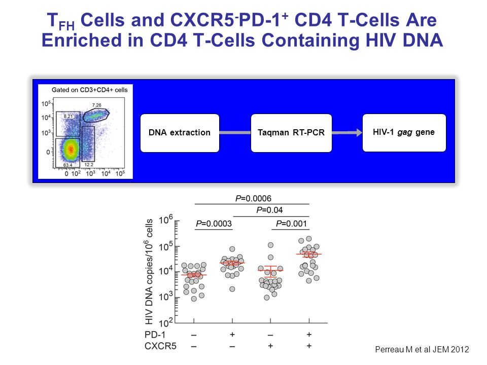 TFH Cells and CXCR5-PD-1+ CD4 T-Cells Are Enriched in CD4 T-Cells Containing HIV DNA