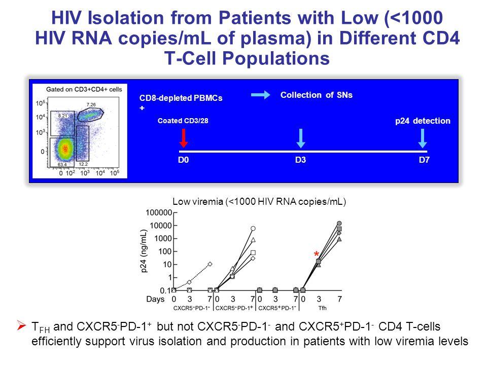 Low viremia (<1000 HIV RNA copies/mL)
