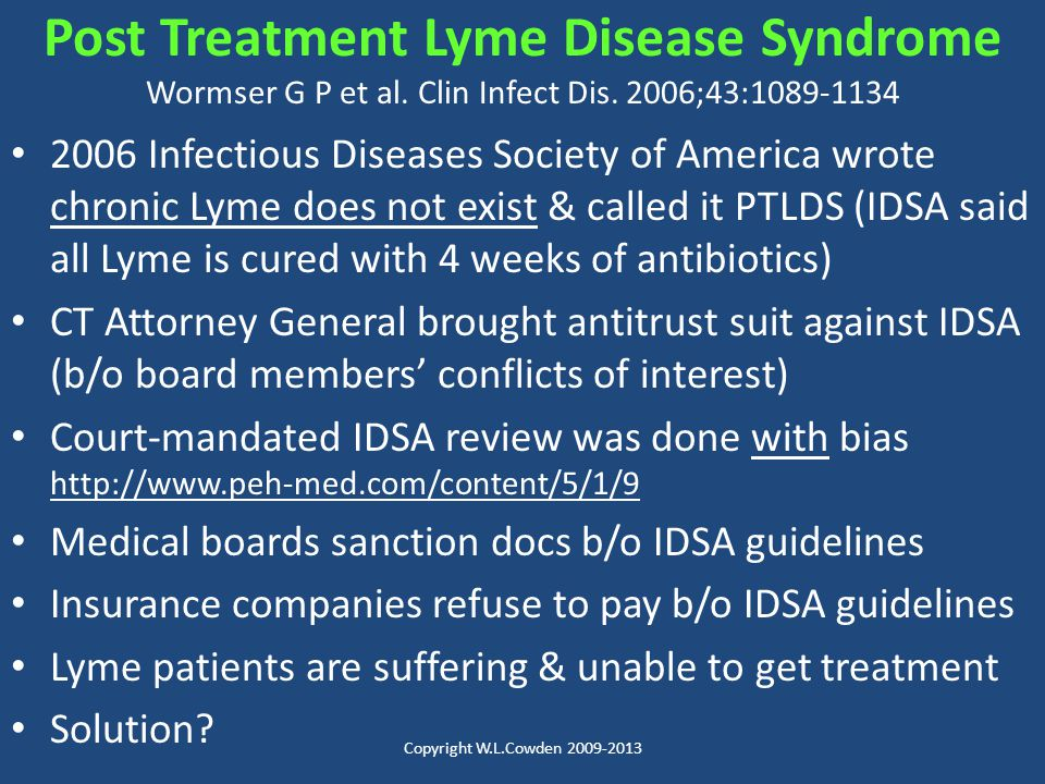 Post Treatment Lyme Disease Syndrome Wormser G P et al. Clin Infect Dis. 2006;43:1089-1134