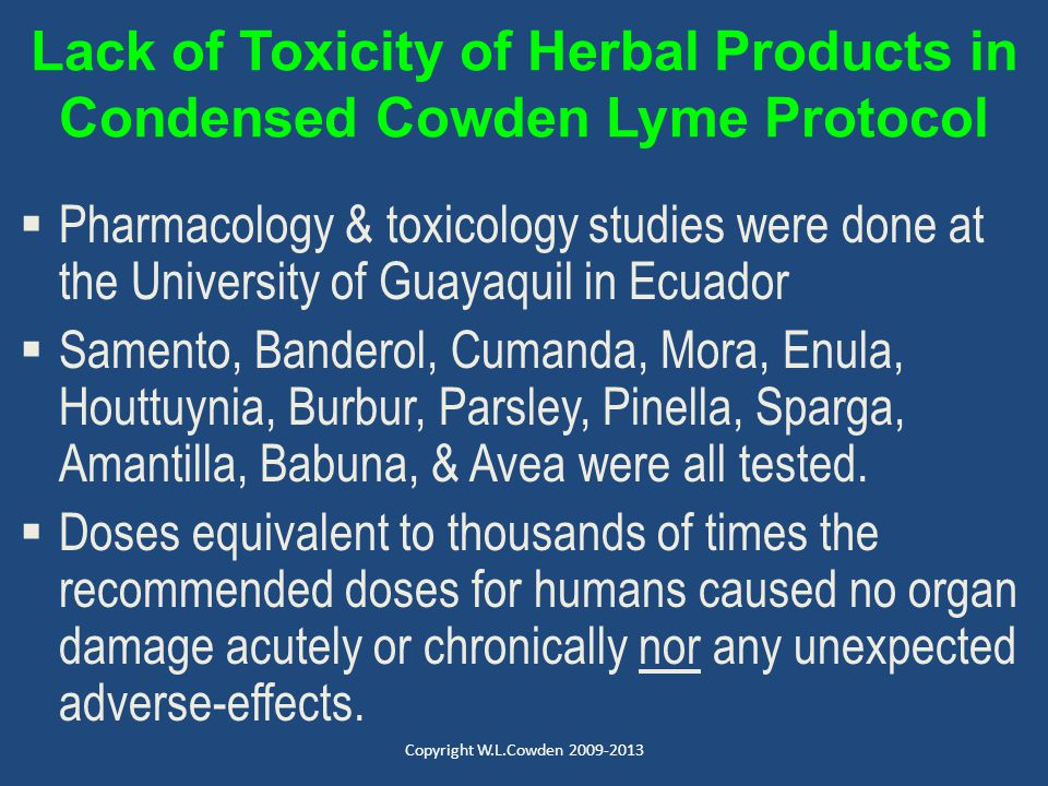 Lack of Toxicity of Herbal Products in Condensed Cowden Lyme Protocol