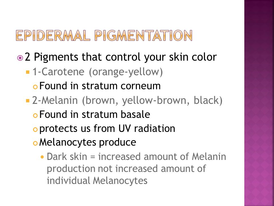 Epidermal Pigmentation