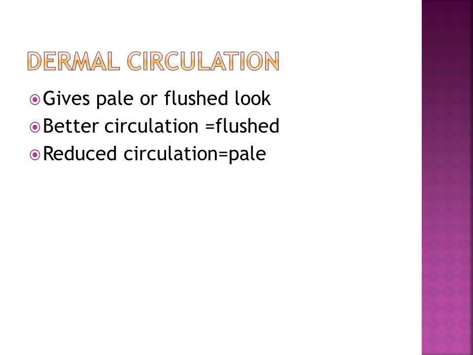 Dermal Circulation Gives pale or flushed look