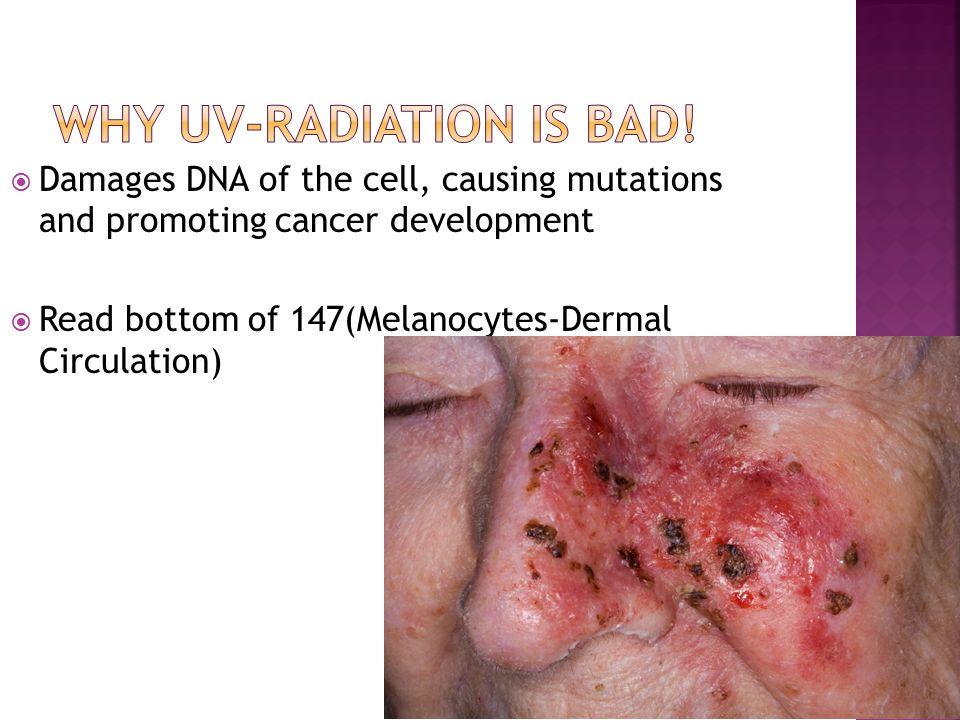 Why UV-Radiation is bad!