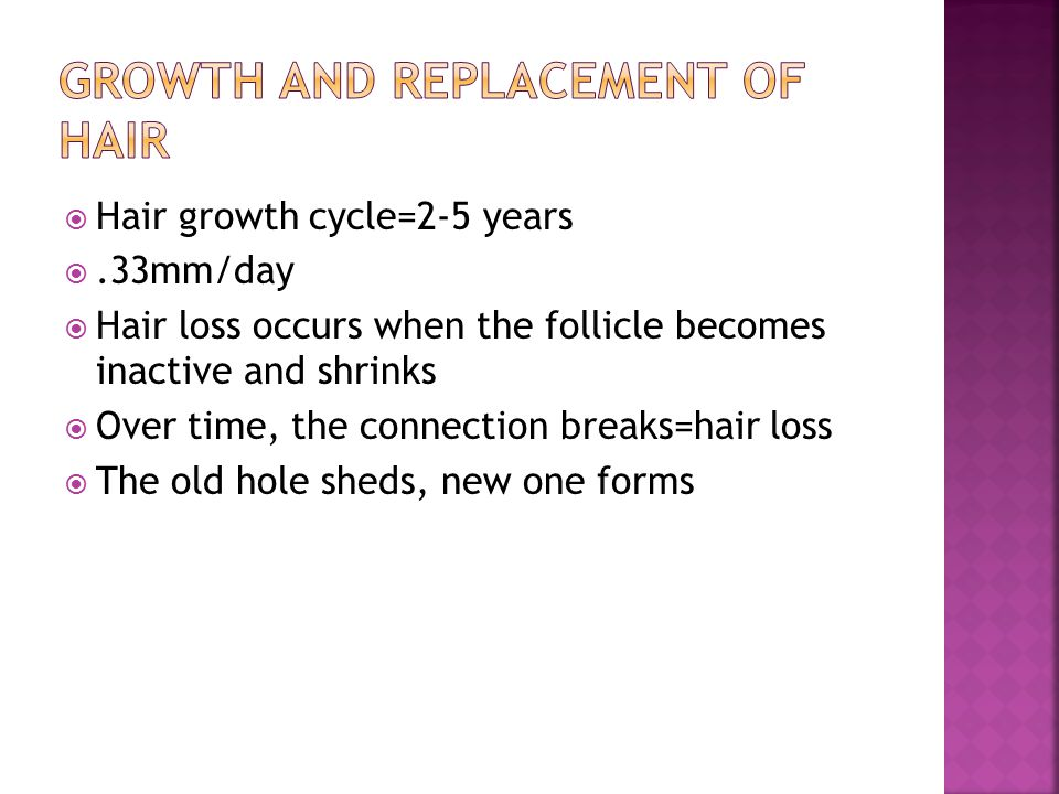 Growth and Replacement of Hair